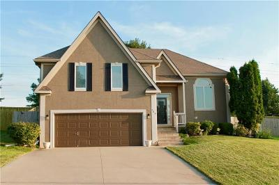 Raymore Single Family Home For Sale: 509 Shoreview Drive