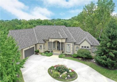 Overland Park Single Family Home For Sale: 12211 W 139th Terrace