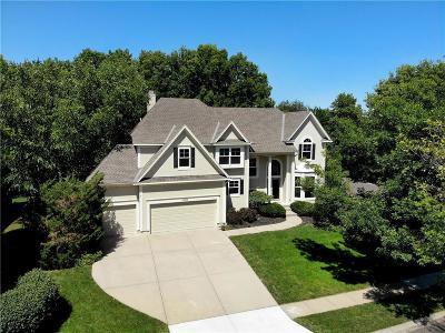 Overland Park Single Family Home For Sale: 14100 Flint Street