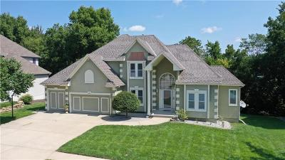 Lee's Summit Single Family Home For Sale: 605 SW Trailpark Drive
