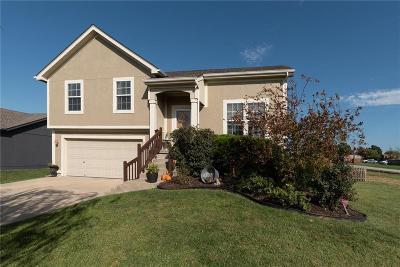 Gardner Single Family Home For Sale: 103 N Pecan Street