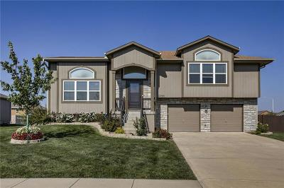 Gardner Single Family Home For Sale: 17193 Kill Creek Road