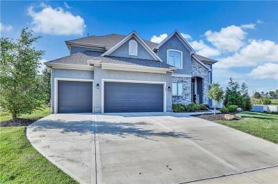 Olathe Single Family Home For Sale: 11398 S Longview Road