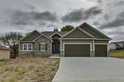 Lee's Summit Single Family Home For Sale: 1301 NE Goshen Drive