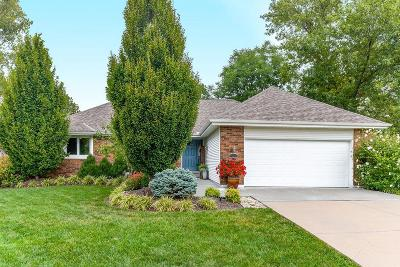 Lee's Summit MO Single Family Home For Sale: $285,000