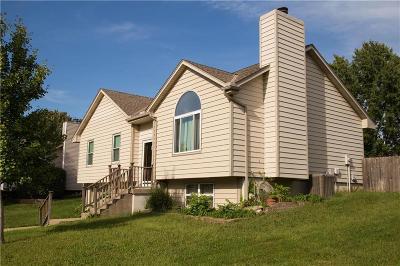 Lee's Summit Single Family Home For Sale: 817 NE Adams Drive