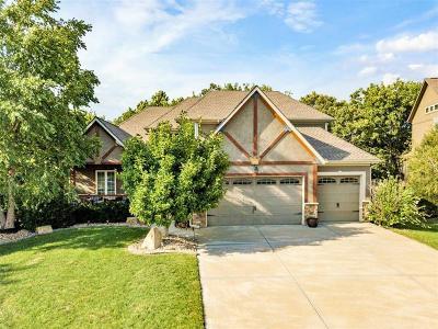 Shawnee Single Family Home For Sale: 6712 Longview Road
