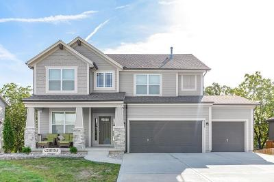Shawnee Single Family Home For Sale: 5229 Meadow View Drive