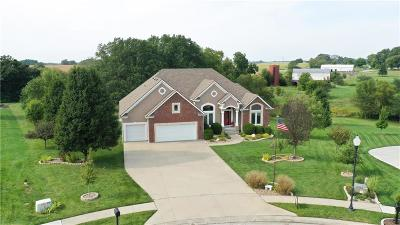 Smithville Single Family Home For Sale: 13602 Short Circle