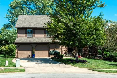Lenexa Single Family Home For Sale: 15109 W 83rd Terrace