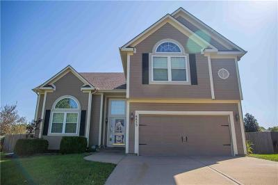 Kansas City KS Single Family Home For Sale: $270,000