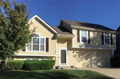 Shawnee KS Single Family Home For Sale: $260,000