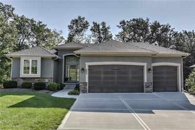 Blue Springs MO Single Family Home For Sale: $389,900