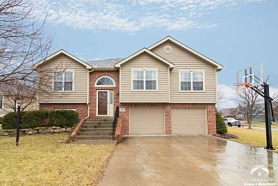 Lawrence KS Single Family Home Under Contract: $259,000
