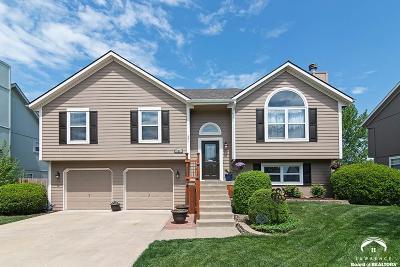Olathe Single Family Home For Sale: 20950 W 125th Street