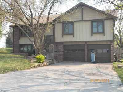 Single Family Home For Sale: 1005 McClure