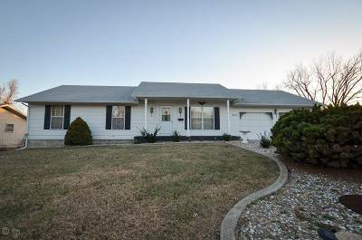 Single Family Home For Sale: 915 Meadow