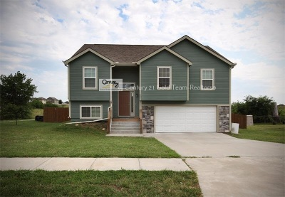 Single Family Home For Sale: 3001 Oakwood