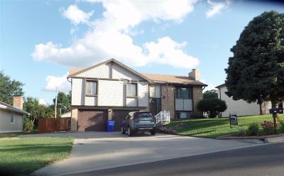 Single Family Home For Sale: 725 Skyline