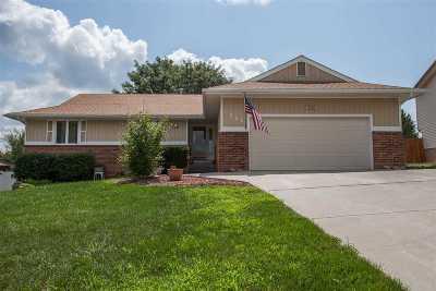 Single Family Home For Sale: 721 Skyline