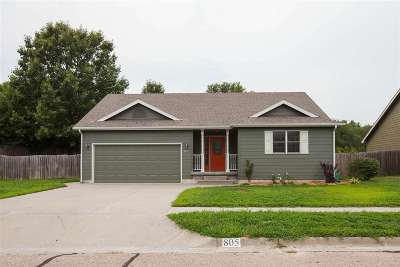 St. George Single Family Home For Sale: 805 Spani