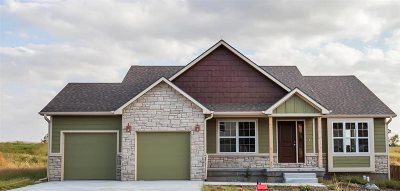 Single Family Home For Sale: 520 Prairie Meadow