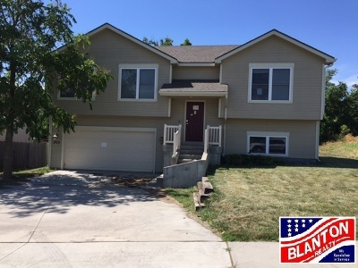 Single Family Home For Sale: 2419 Sawmill Drive