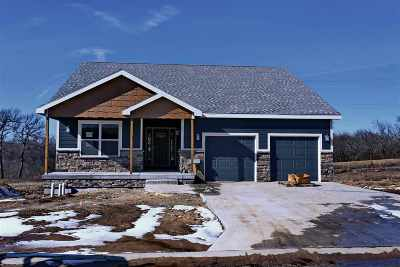 Single Family Home For Sale: 505 Prairie Meadow Drive