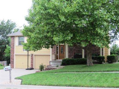 Single Family Home For Sale: 132 N Kiowa Court