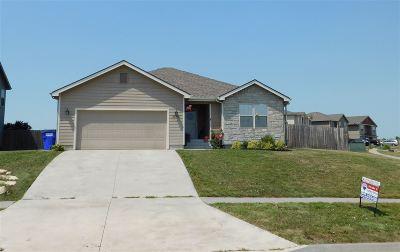Single Family Home For Sale: 2502 Karen Lane