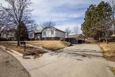 Single Family Home For Sale: 220 Arapahoe Court