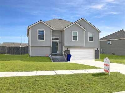 Single Family Home For Sale: 1007 Dakota Lane