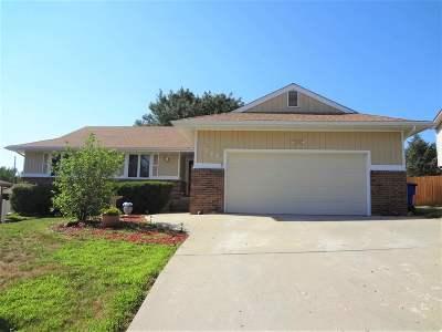 Single Family Home For Sale: 721 Skyline Drive