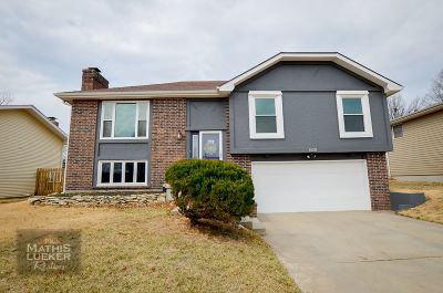 Single Family Home For Sale: 1508 Knollcrest Drive