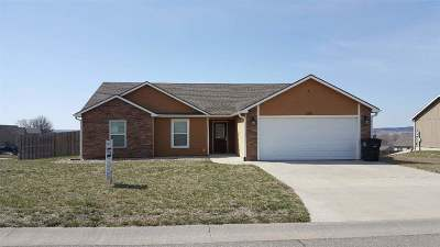 St. George Single Family Home For Sale: 206 Kelly Lane