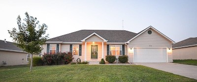 Single Family Home For Sale: 2722 Anderson Drive
