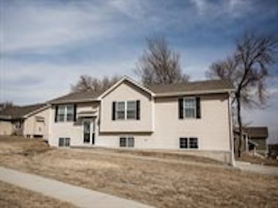 Single Family Home For Sale: 1229 Forest Park Lane