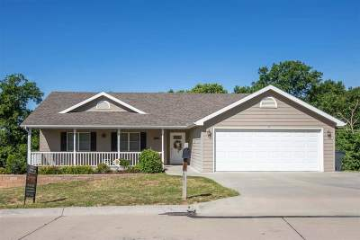 St. George Single Family Home For Sale: 306 Lockett Lane