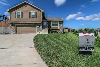 Manhattan Single Family Home For Sale: 712 Loma Ridge Cir