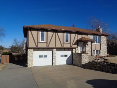 Single Family Home For Sale: 1514 Holly Lane