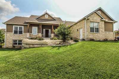 Single Family Home For Sale: 3433 Vanesta Drive