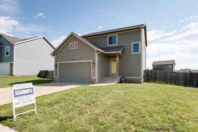 Single Family Home For Sale: 1027 Dakota Lane