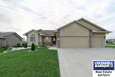 Single Family Home For Sale: 4622 S Dwight Drive