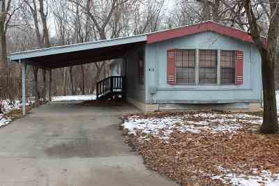 St. George Single Family Home For Sale: 415 Oakview Drive