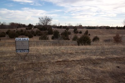 St. George Residential Lots & Land For Sale: 13270 Anthony Drive