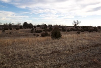 St. George Residential Lots & Land For Sale: 13306 Anthony Drive