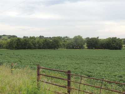 Chapman Farm For Sale: 1993 Rain Road