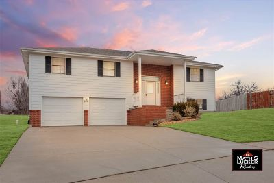 Single Family Home For Sale: 2109 Sunflower Ct.