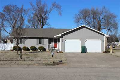 Dickinson County Single Family Home For Sale: 207 N Pine Street
