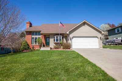 Single Family Home For Sale: 2208 Grandview Drive